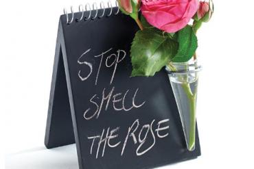 San Valentino propositi di corteggiamento