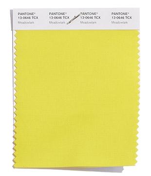 Giallo meadowlark pantone 13-0646